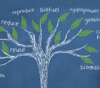 Image of tree Showing facts about Biological Changes